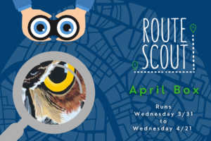 MITS April Route Scout Graphic